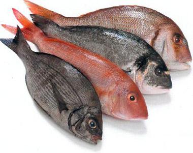 Pescadería Juan Luis
