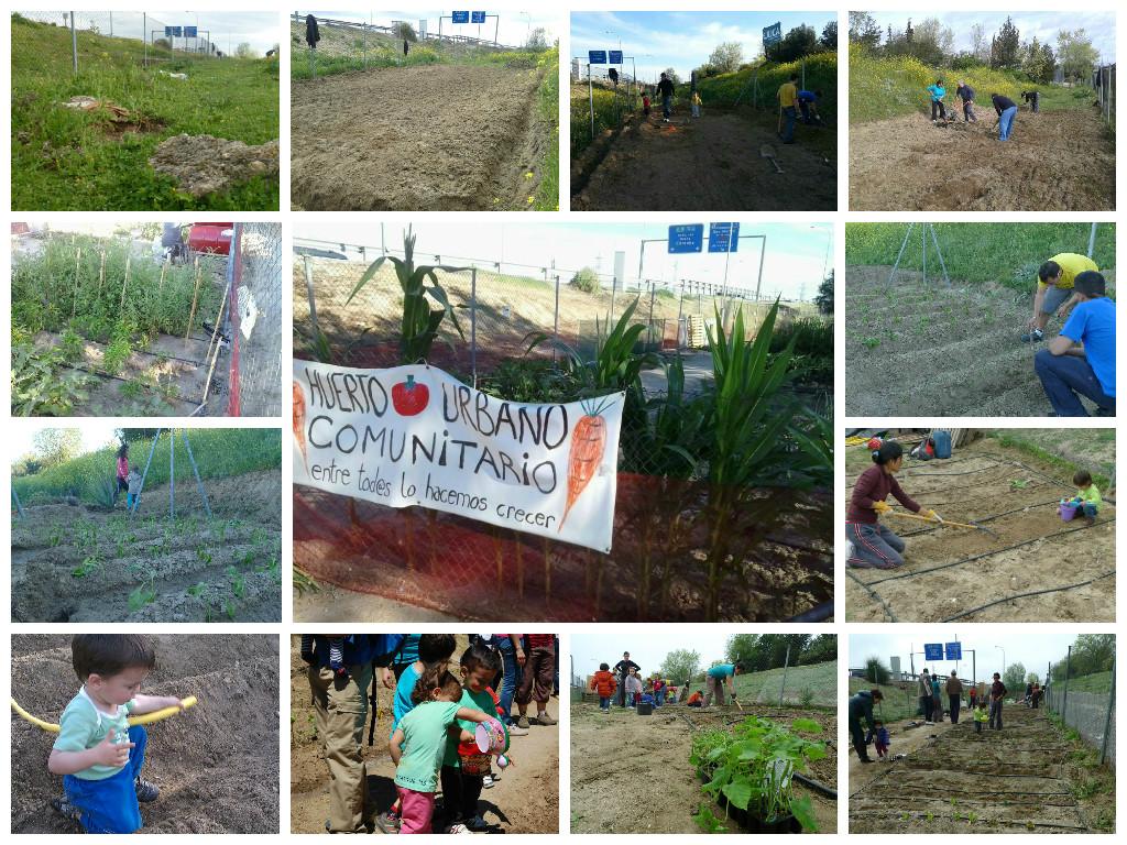 Plantación en el Huerto Comunitario del barrio