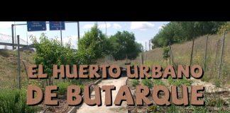 Vídeo del Huerto Urbano de Butarque 2016 - A.V.I.B.